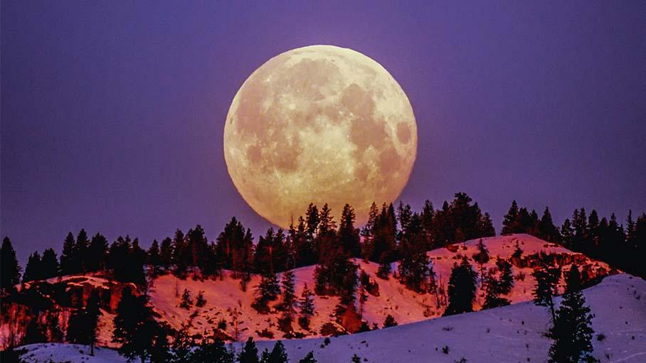 Лунное затмение 30 ноября Овен